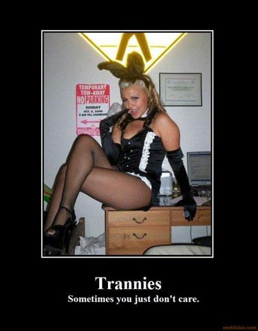 Trannies