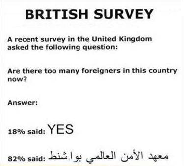 BritishForeignersSurvey