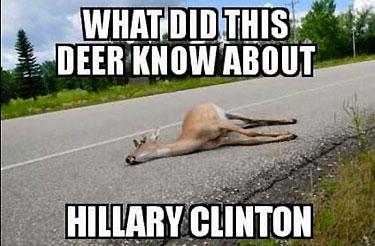 HillaryDeadDeer