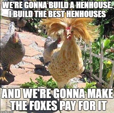 BuildaHenhouse