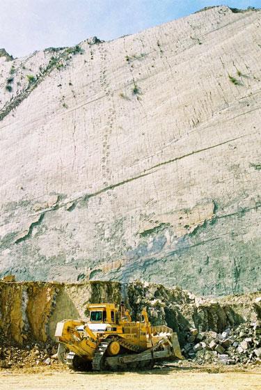 bolivia-dinosaur-wall-